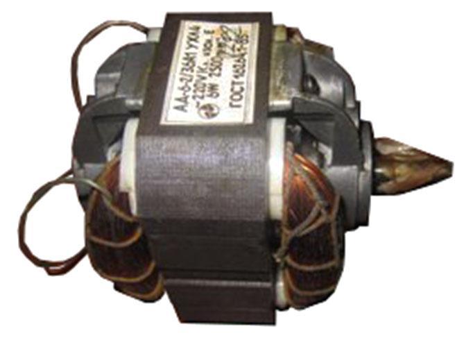 АД-6-2/36А1 фотография электродвигателя.
